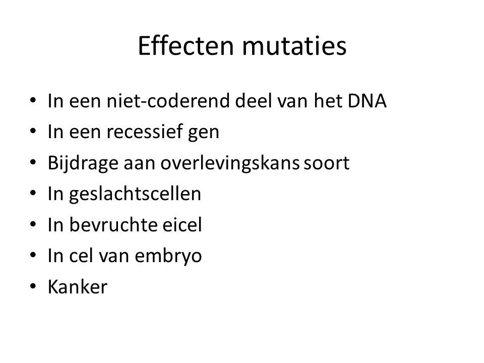Effecten mutaties In een niet-coderend deel van het DNA In een recessief gen Bijdrage aan overlevingskans soort In geslachtscellen In bevruchte eicel