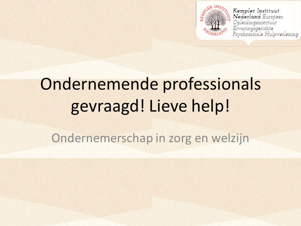 Ondernemende professionals gevraagd! Lieve help! Ondernemerschap in zorg en welzijn