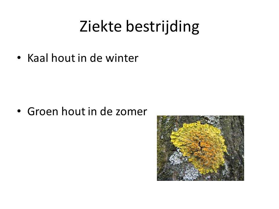 Ziekte bestrijding Kaal hout in de winter Groen hout in de zomer