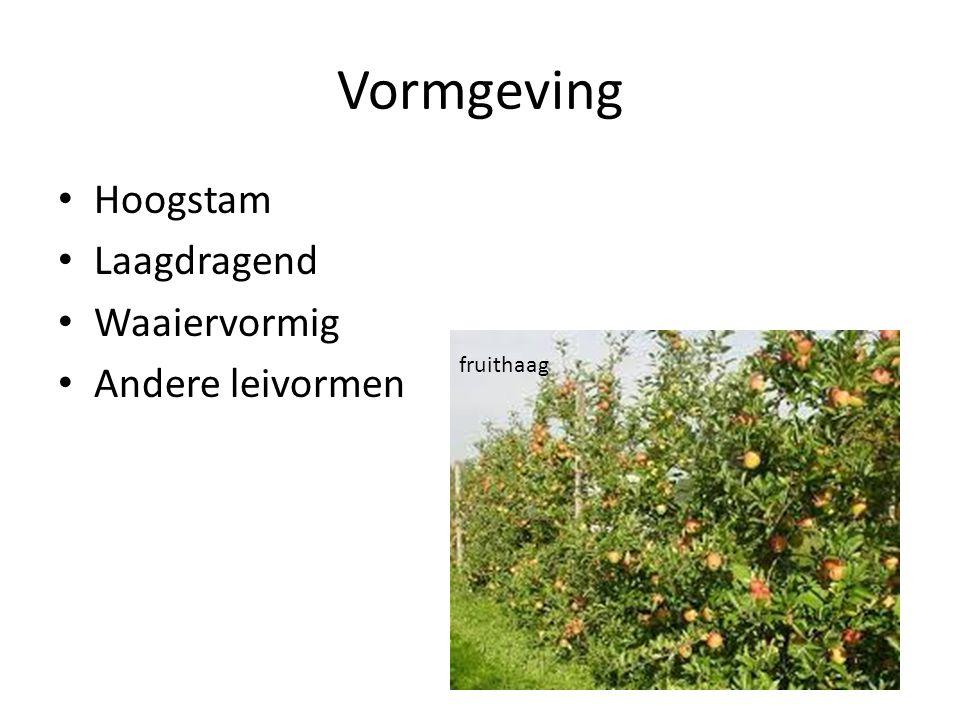 Wortelvoet verzorging Bodembeplanting bemesting