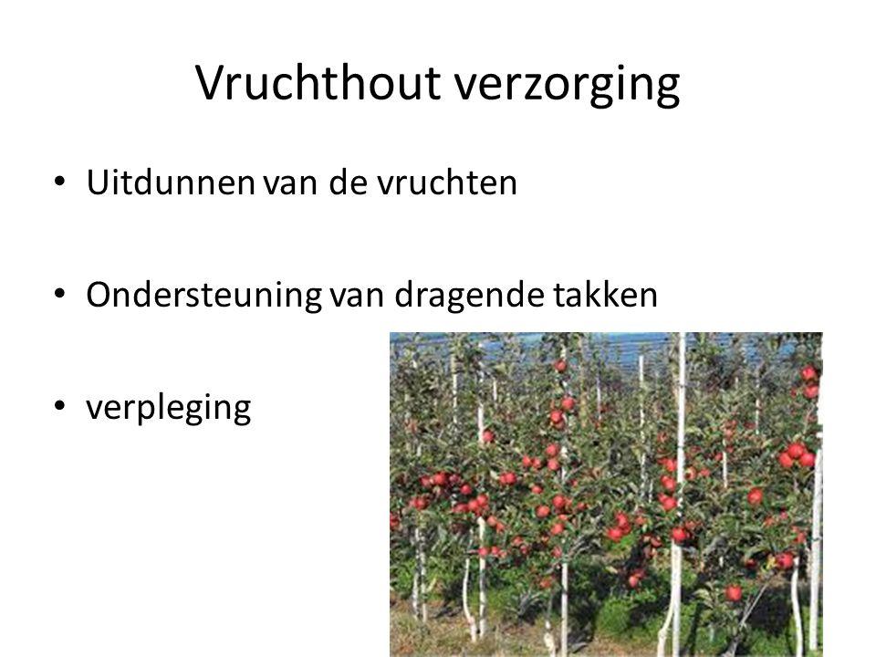 Vruchthout verzorging Uitdunnen van de vruchten Ondersteuning van dragende takken verpleging