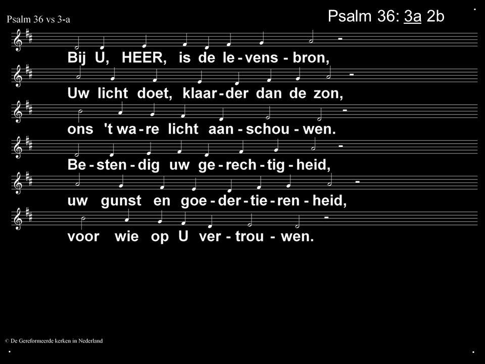 ... Psalm 36: 3a 2b