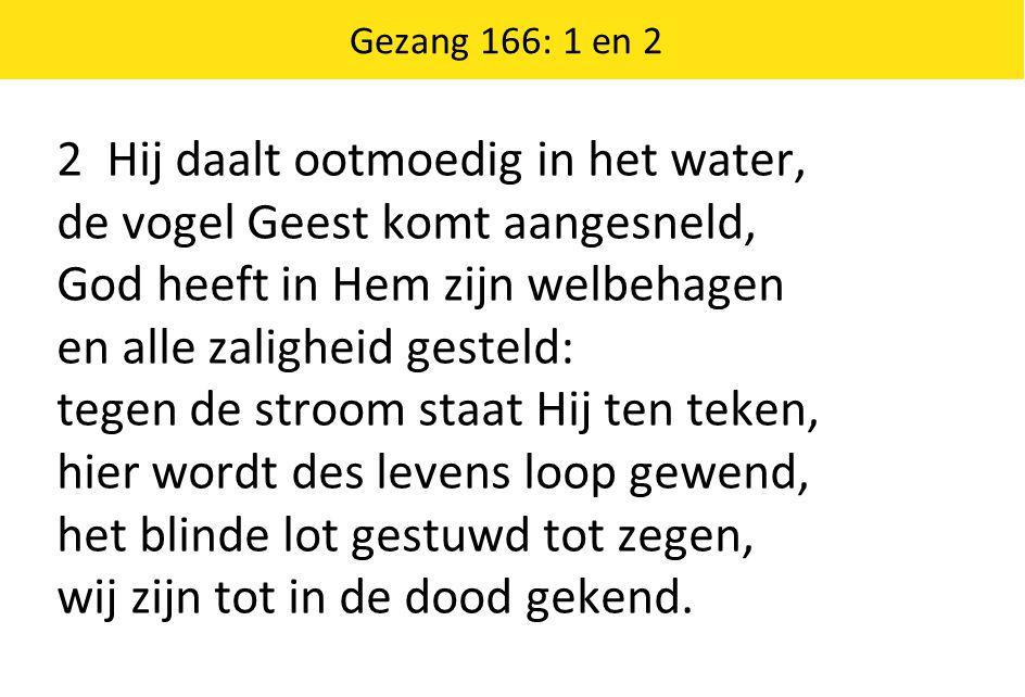 Gezang 166: 1 en 2 2 Hij daalt ootmoedig in het water, de vogel Geest komt aangesneld, God heeft in Hem zijn welbehagen en alle zaligheid gesteld: teg