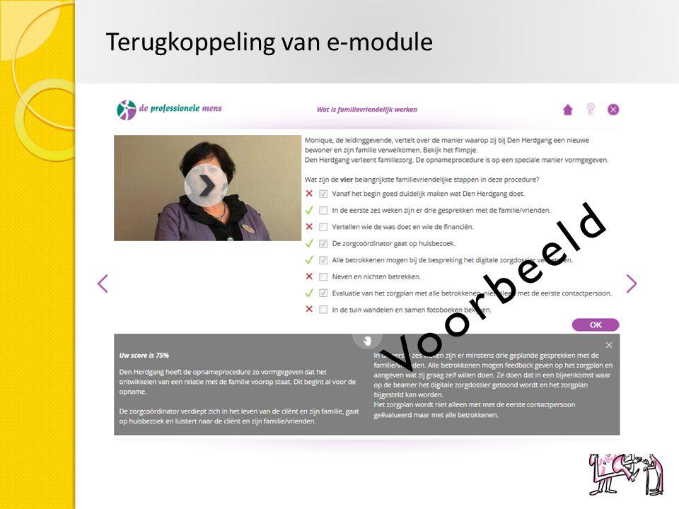 Terugkoppeling van e-module Voorbeeld