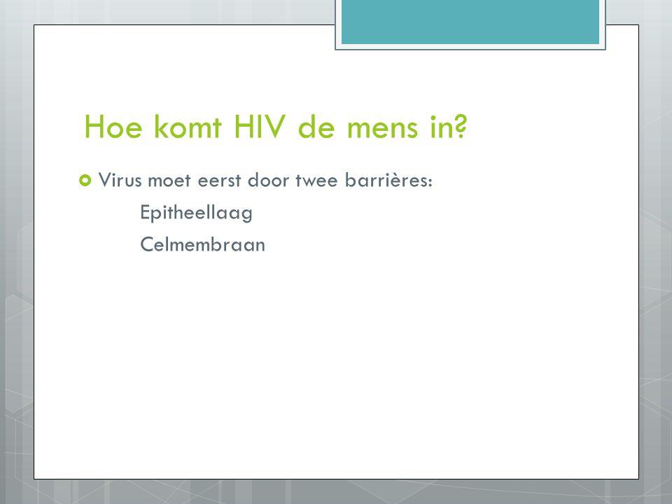 Hoe komt HIV de mens in?  Virus moet eerst door twee barrières: Epitheellaag Celmembraan