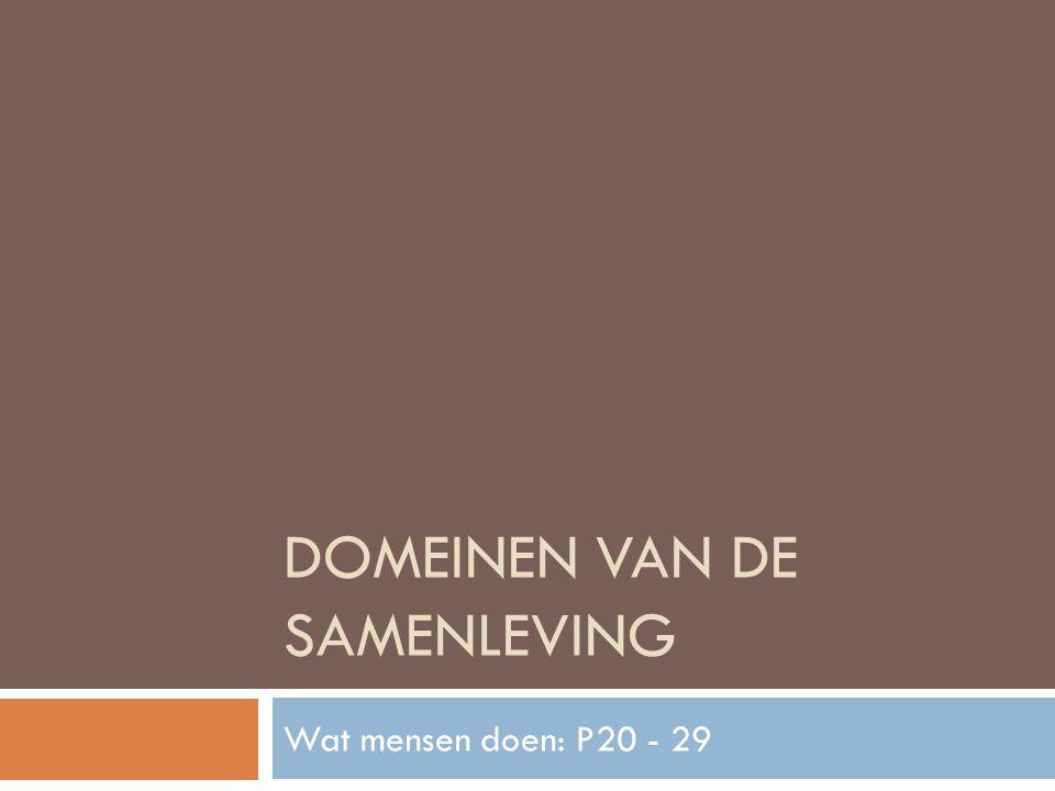 DOMEINEN VAN DE SAMENLEVING Wat mensen doen: P20 - 29