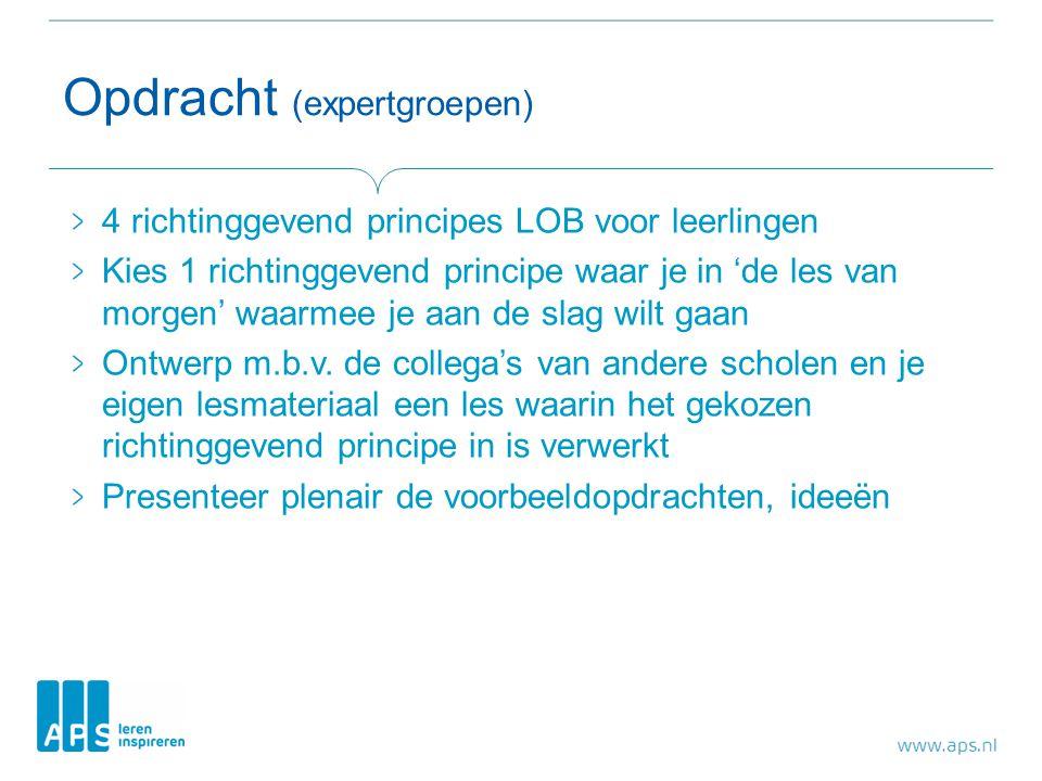 Opdracht (expertgroepen) 4 richtinggevend principes LOB voor leerlingen Kies 1 richtinggevend principe waar je in 'de les van morgen' waarmee je aan de slag wilt gaan Ontwerp m.b.v.