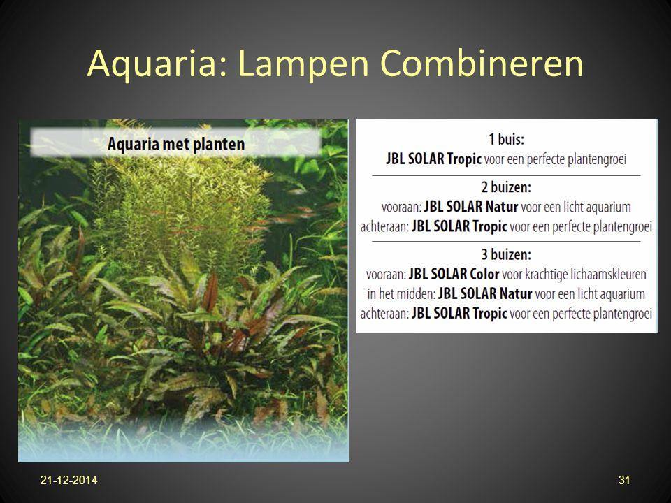 Aquaria: Lampen Combineren 21-12-201431