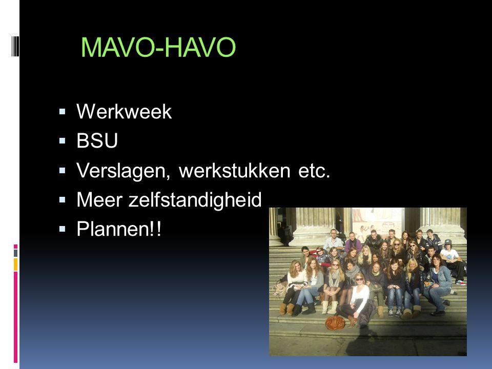 MAVO-HAVO  Werkweek  BSU  Verslagen, werkstukken etc.  Meer zelfstandigheid  Plannen!!