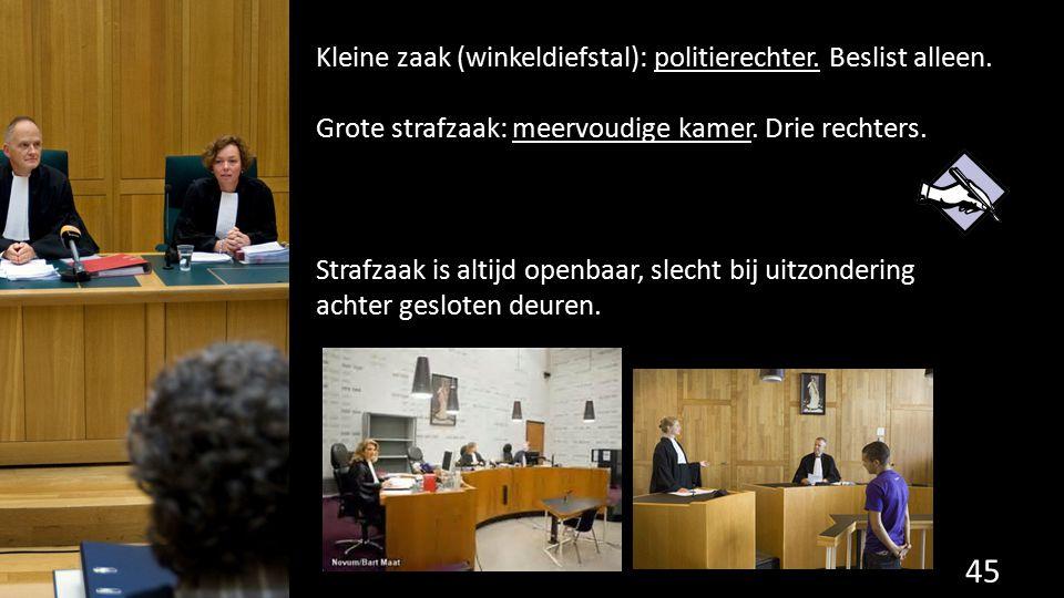 Kleine zaak (winkeldiefstal): politierechter. Beslist alleen. Grote strafzaak: meervoudige kamer. Drie rechters. Strafzaak is altijd openbaar, slecht
