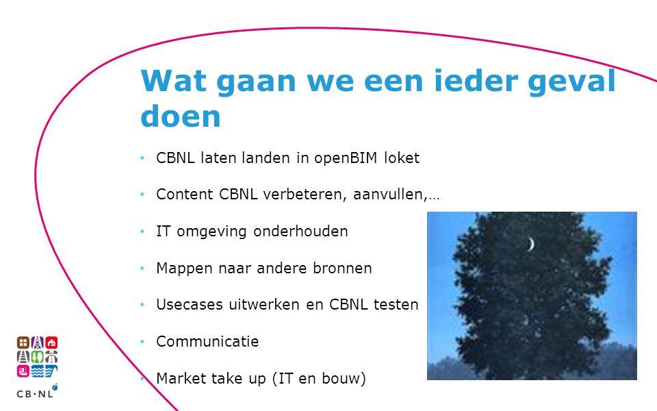 CBNL laten landen in openBIM loket Content CBNL verbeteren, aanvullen,… IT omgeving onderhouden Mappen naar andere bronnen Usecases uitwerken en CBNL testen Communicatie Market take up (IT en bouw) Wat gaan we een ieder geval doen
