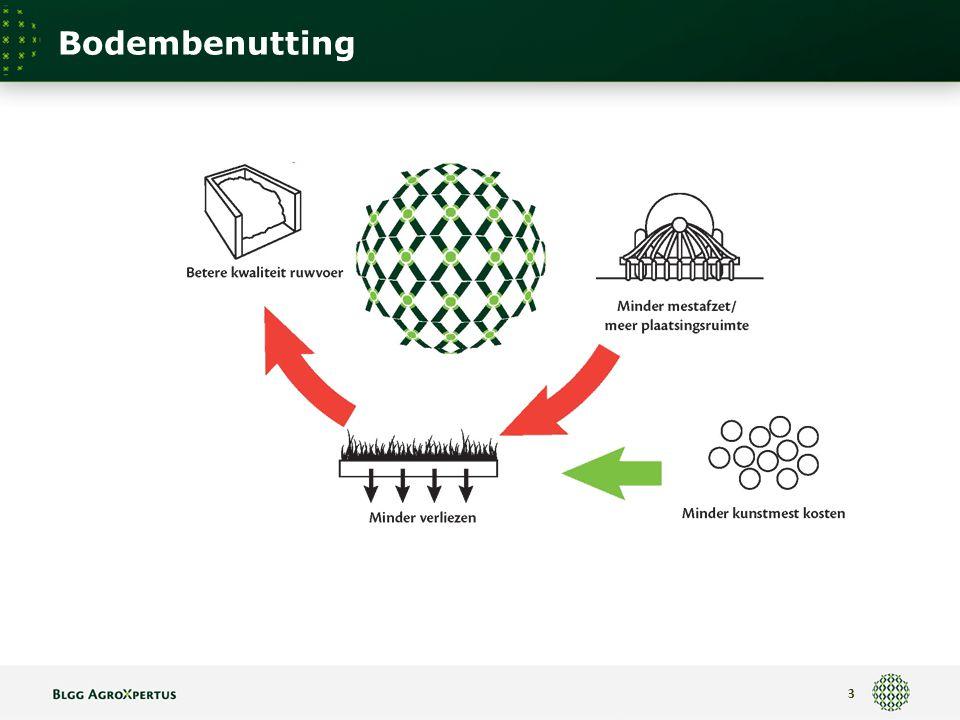 Bodembenutting 3