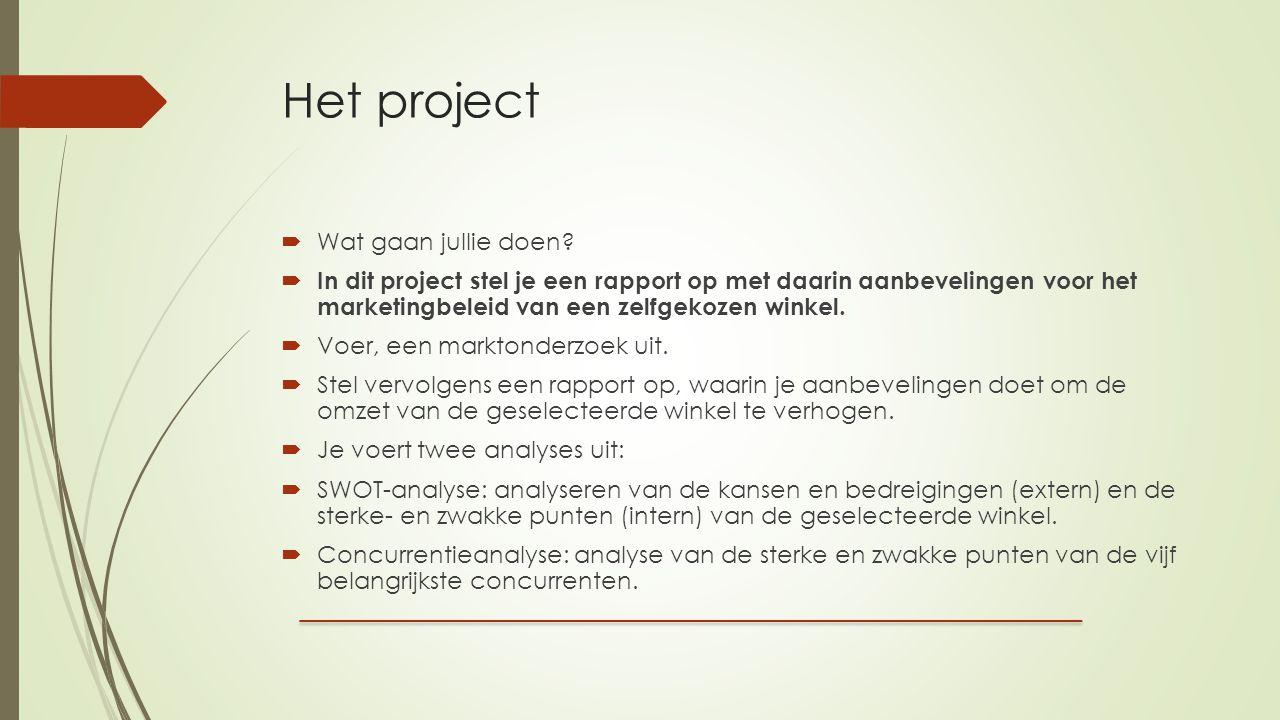 Het project  Wat gaan jullie doen.