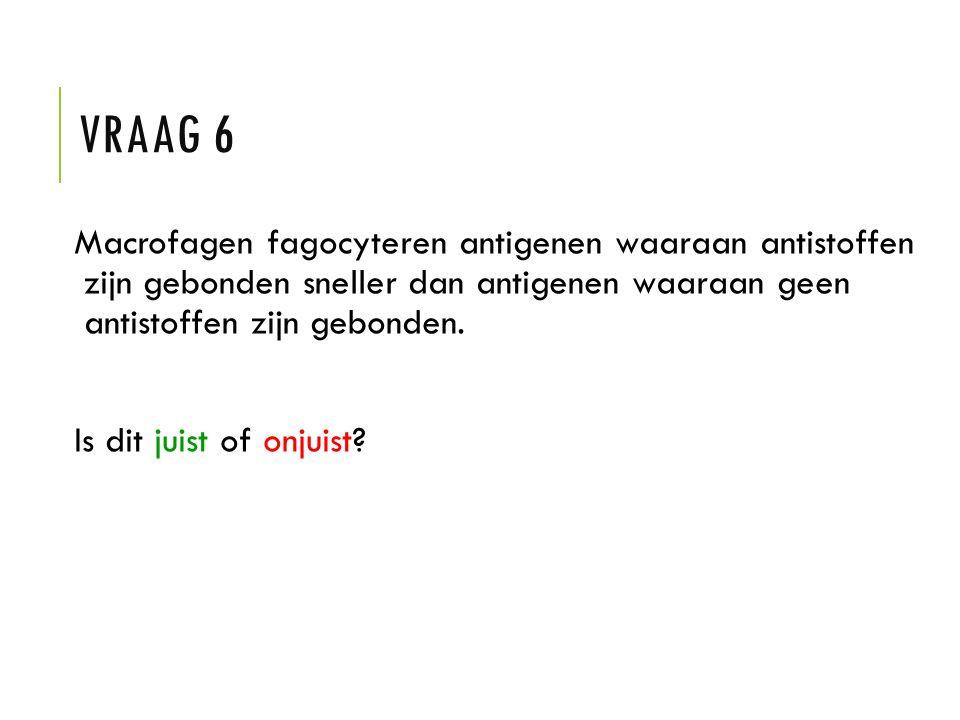 VRAAG 6 Macrofagen fagocyteren antigenen waaraan antistoffen zijn gebonden sneller dan antigenen waaraan geen antistoffen zijn gebonden. Is dit juist
