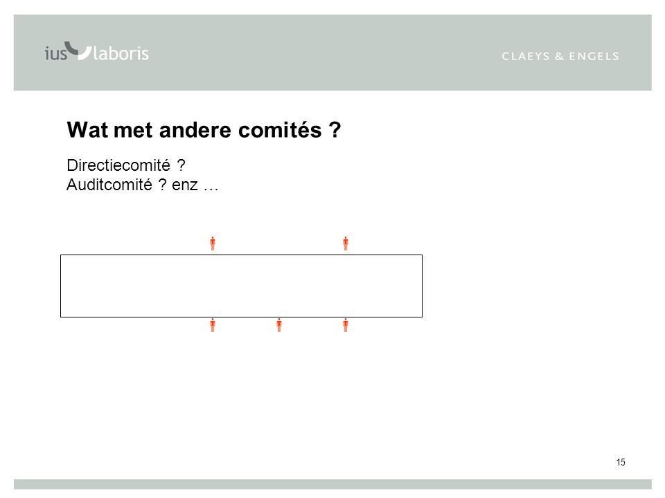 15 Wat met andere comités Directiecomité Auditcomité enz …     