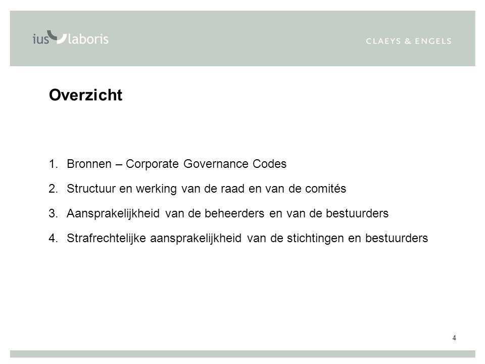 4 Overzicht 1.Bronnen – Corporate Governance Codes 2.Structuur en werking van de raad en van de comités 3.Aansprakelijkheid van de beheerders en van de bestuurders 4.Strafrechtelijke aansprakelijkheid van de stichtingen en bestuurders