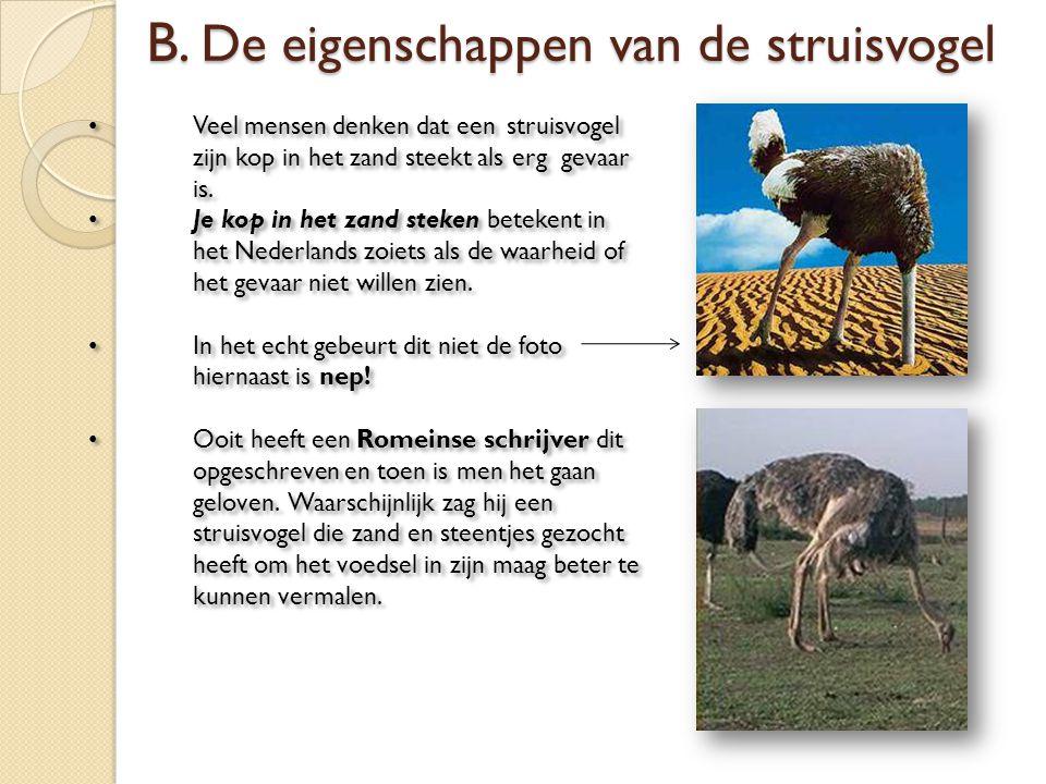 Veel mensen denken dat een struisvogel zijn kop in het zand steekt als erg gevaar is. Je kop in het zand steken betekent in het Nederlands zoiets als