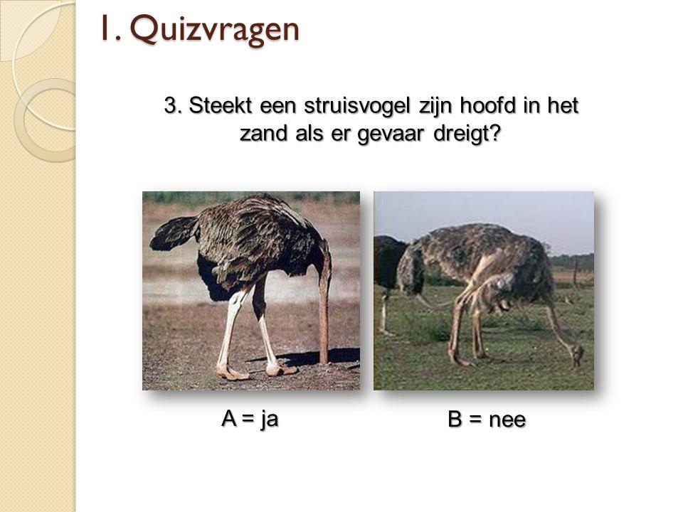 3. Steekt een struisvogel zijn hoofd in het zand als er gevaar dreigt? A = ja B = nee