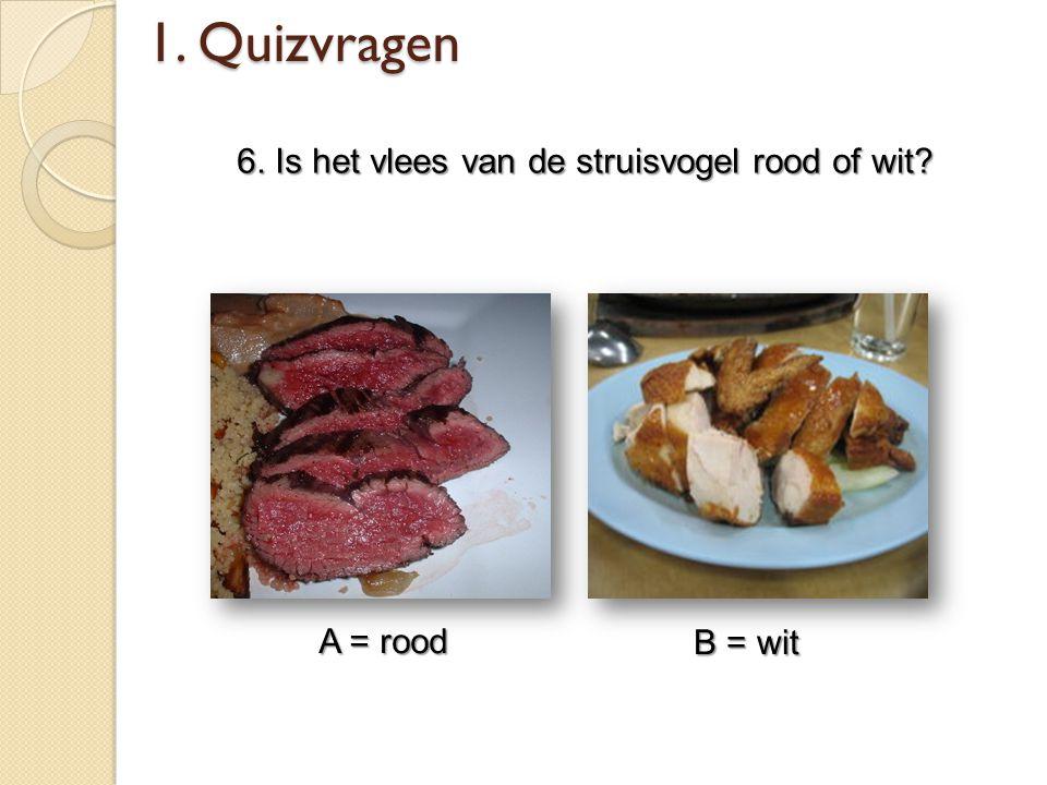 1. Quizvragen 6. Is het vlees van de struisvogel rood of wit? A = rood B = wit