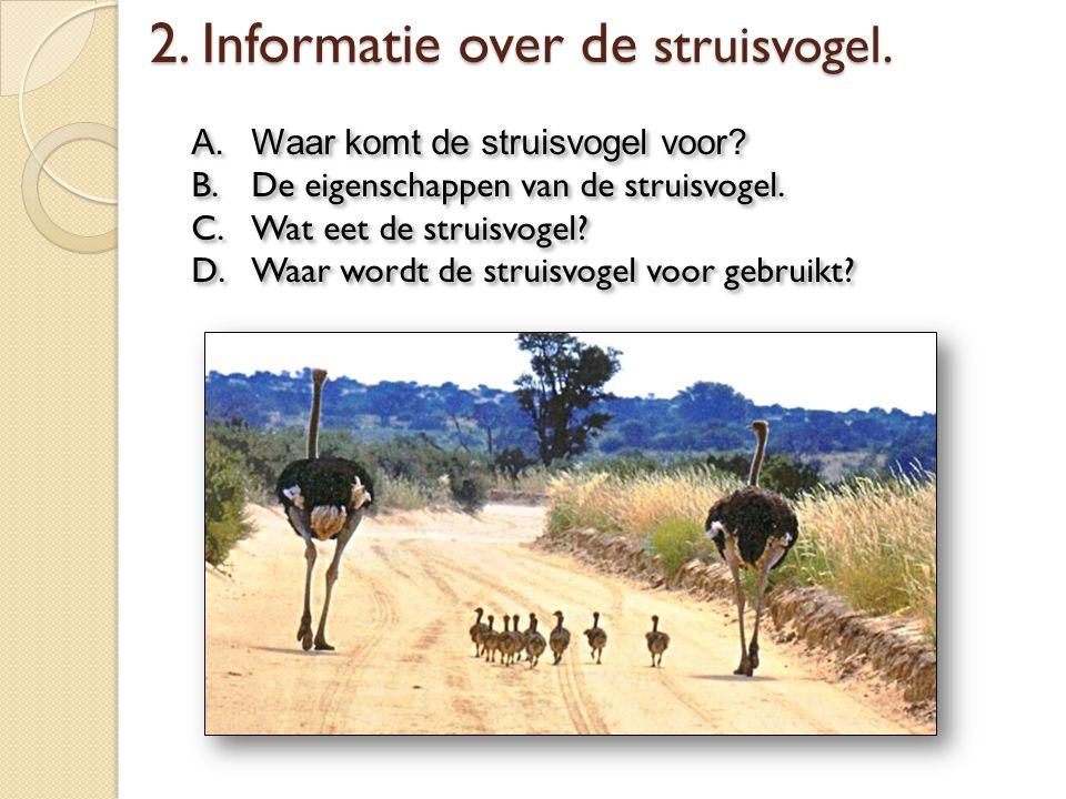 A.Waar komt de struisvogel voor? B.De eigenschappen van de struisvogel. C.Wat eet de struisvogel? D.Waar wordt de struisvogel voor gebruikt? A.Waar ko