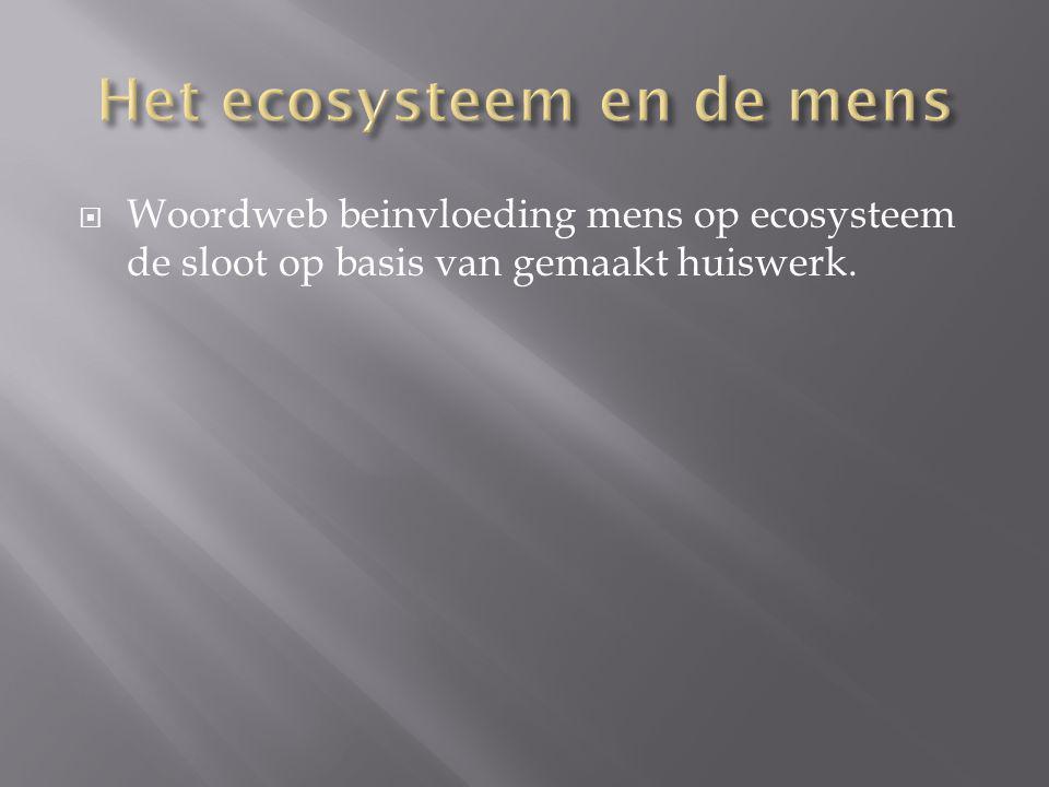  Woordweb beinvloeding mens op ecosysteem de sloot op basis van gemaakt huiswerk.