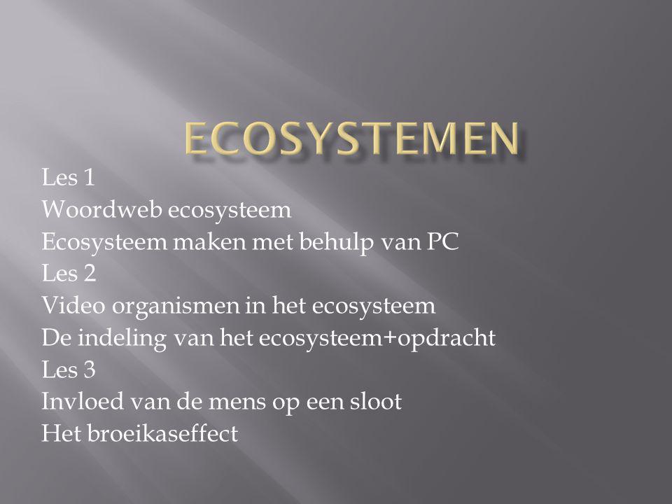 Les 1 Woordweb ecosysteem Ecosysteem maken met behulp van PC Les 2 Video organismen in het ecosysteem De indeling van het ecosysteem+opdracht Les 3 In