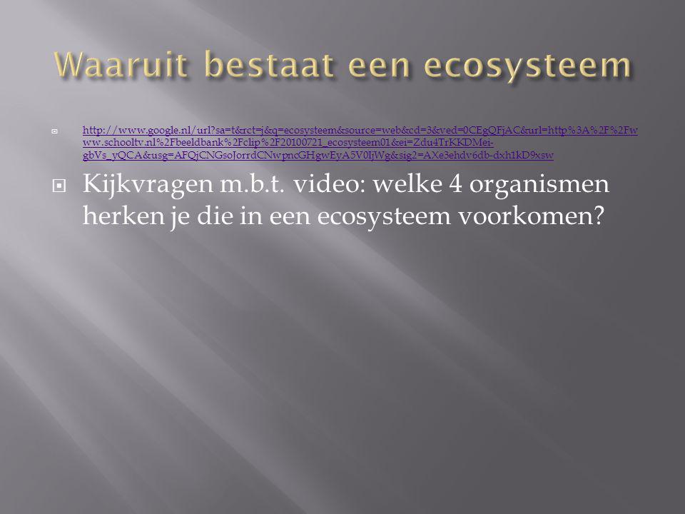  http://www.google.nl/url?sa=t&rct=j&q=ecosysteem&source=web&cd=3&ved=0CEgQFjAC&url=http%3A%2F%2Fw ww.schooltv.nl%2Fbeeldbank%2Fclip%2F20100721_ecosy
