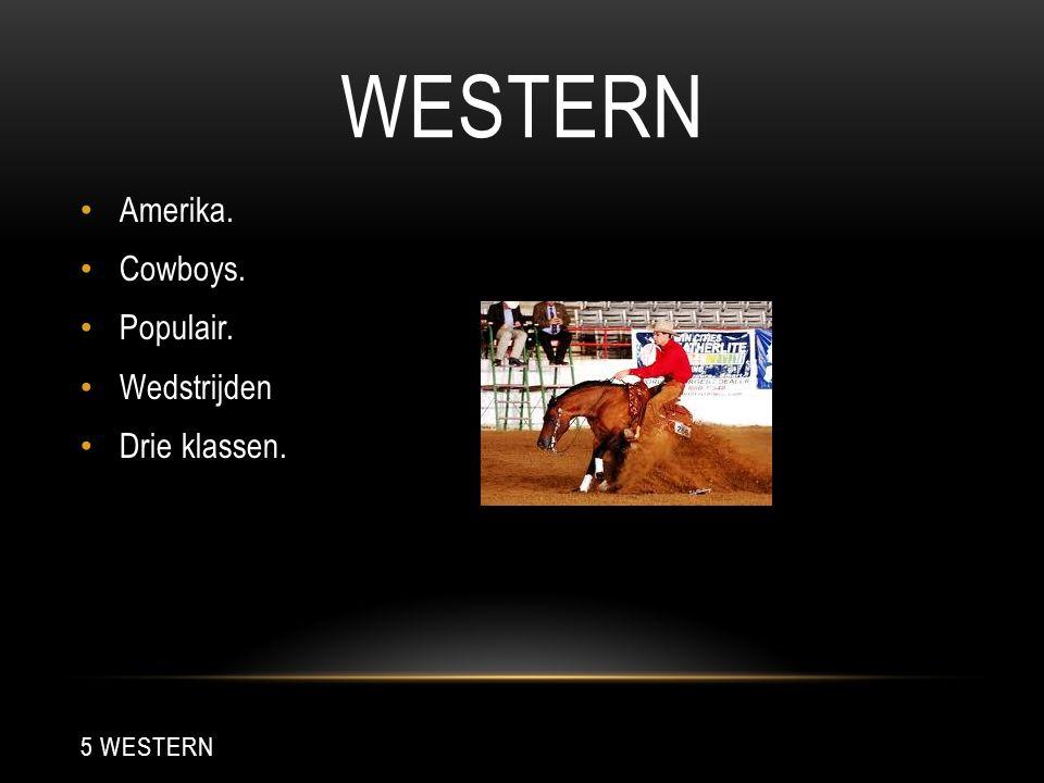 WESTERN Amerika. Cowboys. Populair. Wedstrijden Drie klassen. 5 WESTERN