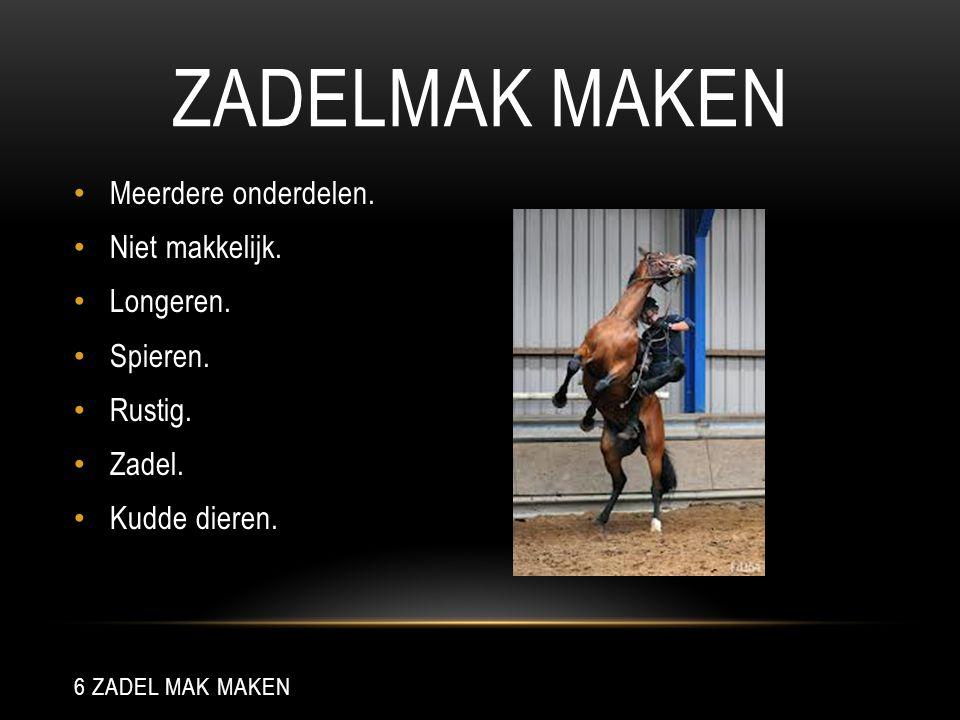 ZADELMAK MAKEN Meerdere onderdelen. Niet makkelijk. Longeren. Spieren. Rustig. Zadel. Kudde dieren. 6 ZADEL MAK MAKEN