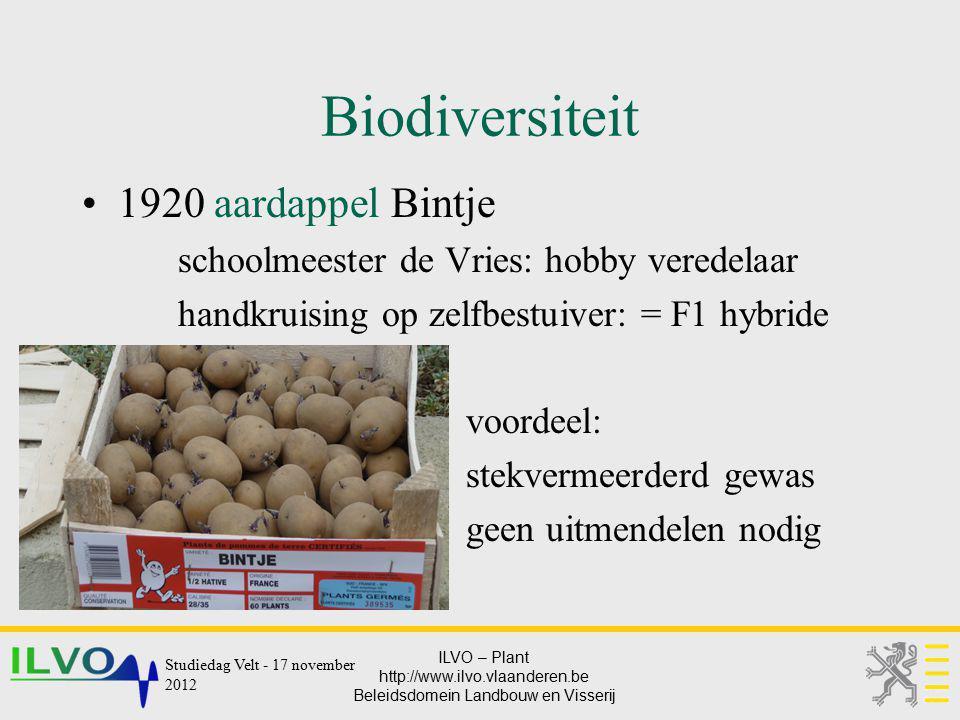 ILVO – Plant http://www.ilvo.vlaanderen.be Beleidsdomein Landbouw en Visserij Biodiversiteit 1920 aardappel Bintje schoolmeester de Vries: hobby vered