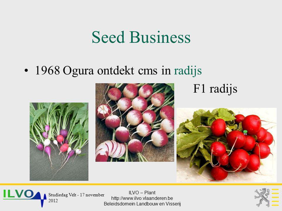 ILVO – Plant http://www.ilvo.vlaanderen.be Beleidsdomein Landbouw en Visserij Seed Business 1968 Ogura ontdekt cms in radijs F1 radijs Studiedag Velt