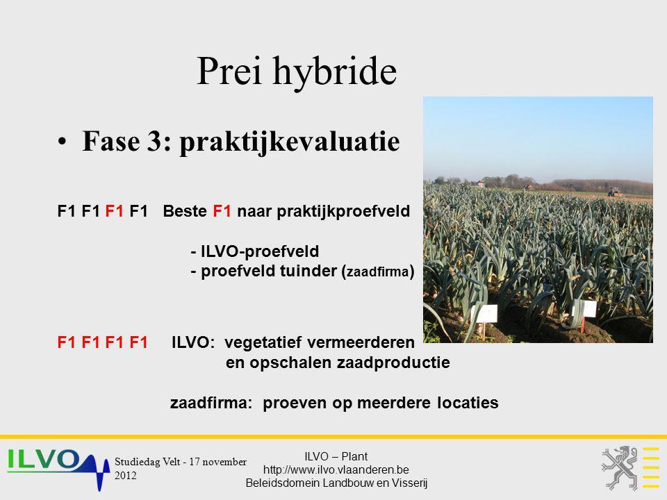ILVO – Plant http://www.ilvo.vlaanderen.be Beleidsdomein Landbouw en Visserij Prei hybride Fase 3: praktijkevaluatie F1 F1 F1 F1 Beste F1 naar praktij