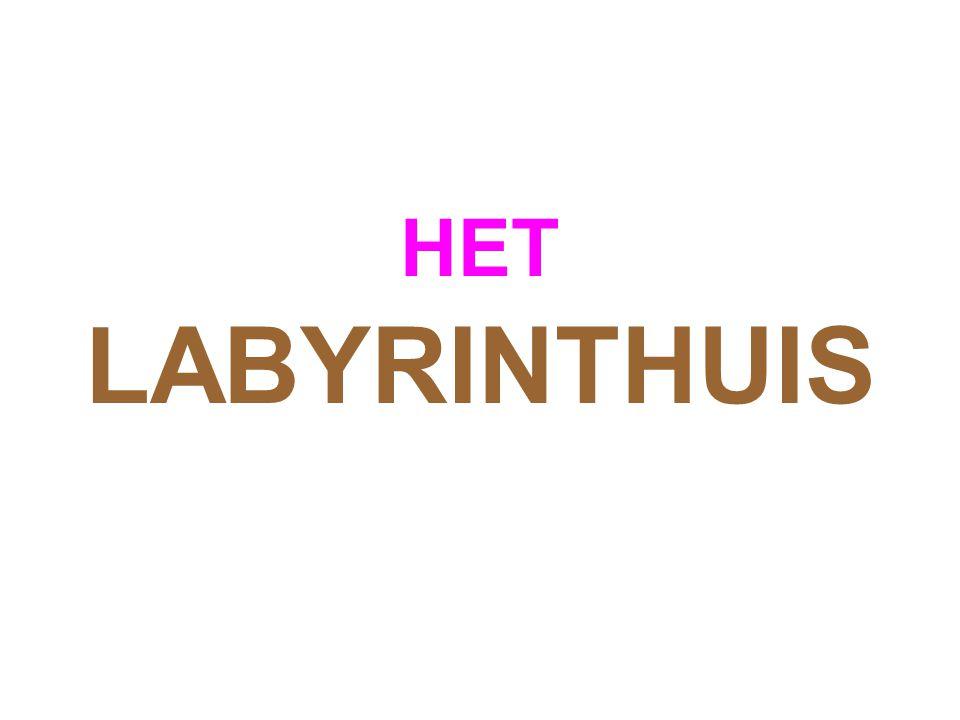 HET LABYRINTHUIS