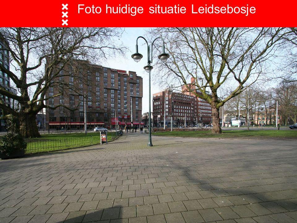 Foto huidige situatie Leidsebosje