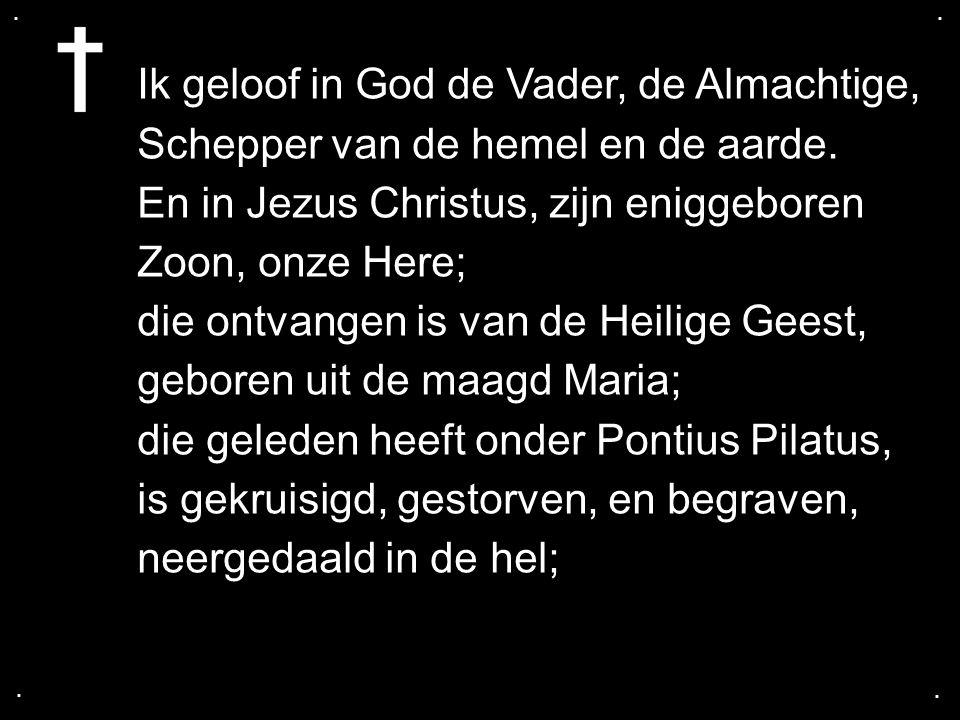 .... Ik geloof in God de Vader, de Almachtige, Schepper van de hemel en de aarde. En in Jezus Christus, zijn eniggeboren Zoon, onze Here; die ontvange