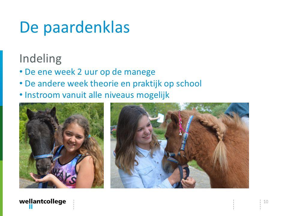 De paardenklas Indeling De ene week 2 uur op de manege De andere week theorie en praktijk op school Instroom vanuit alle niveaus mogelijk 10