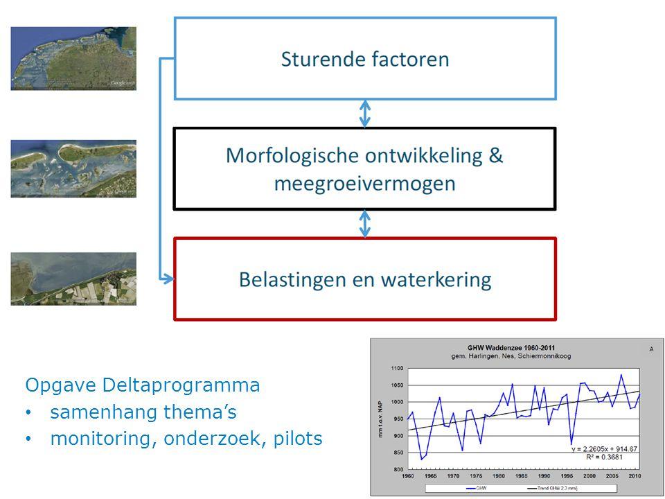 Opgave Deltaprogramma samenhang thema's monitoring, onderzoek, pilots