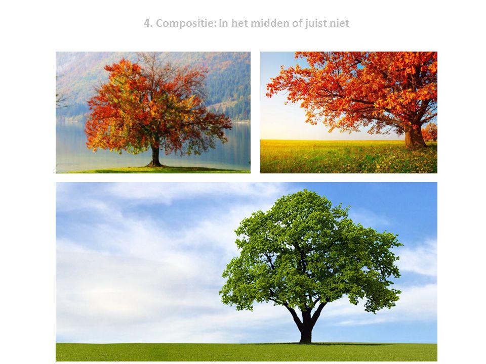 4. Compositie: In het midden of juist niet