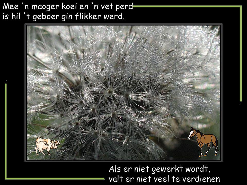 Es de groote de goei waoren, dan zaogde ze van weed.