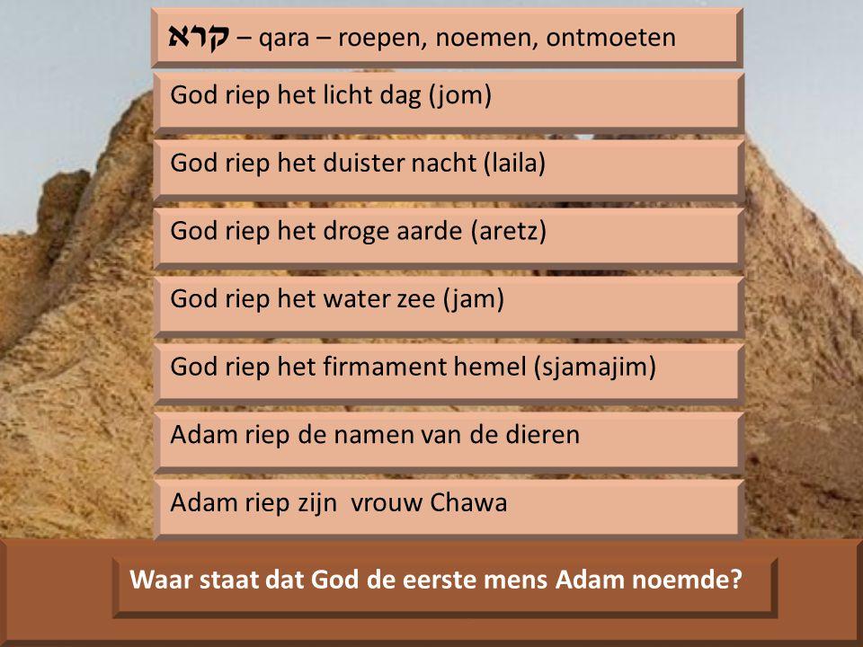 God riep het licht dag (jom) God riep het duister nacht (laila) God riep het droge aarde (aretz) God riep het water zee (jam) God riep het firmament hemel (sjamajim) Adam riep de namen van de dieren Adam riep zijn vrouw Chawa Waar staat dat God de eerste mens Adam noemde