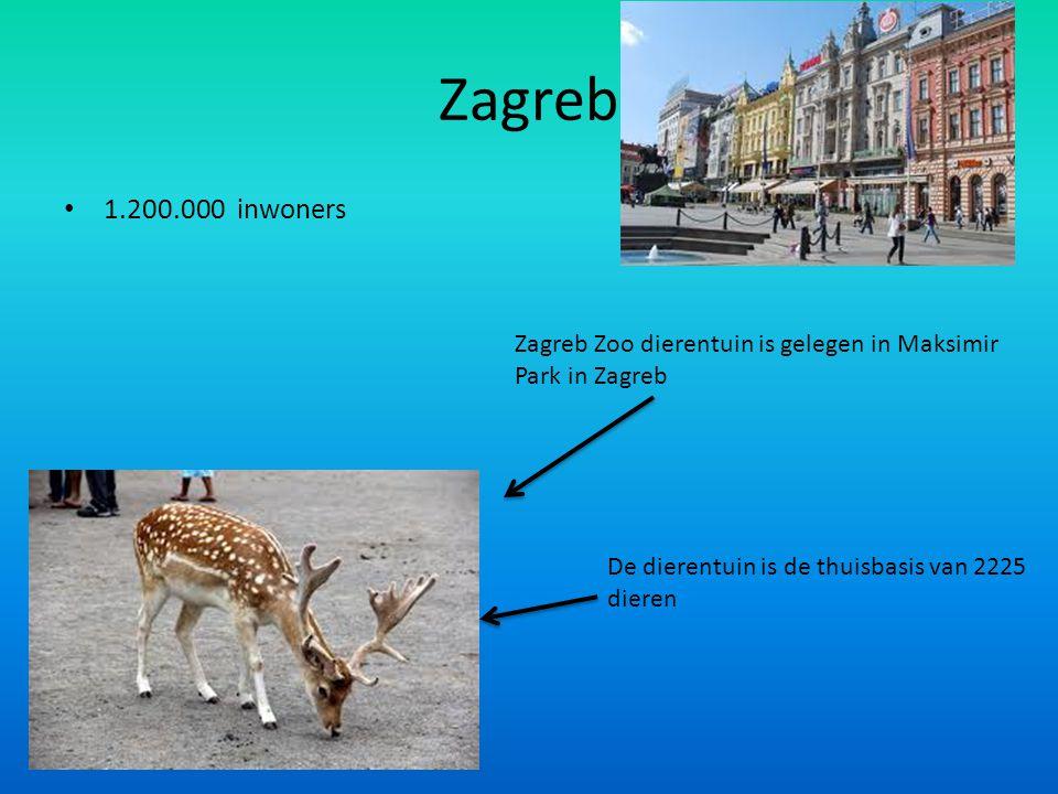 Zagreb 1.200.000 inwoners Zagreb Zoo dierentuin is gelegen in Maksimir Park in Zagreb De dierentuin is de thuisbasis van 2225 dieren