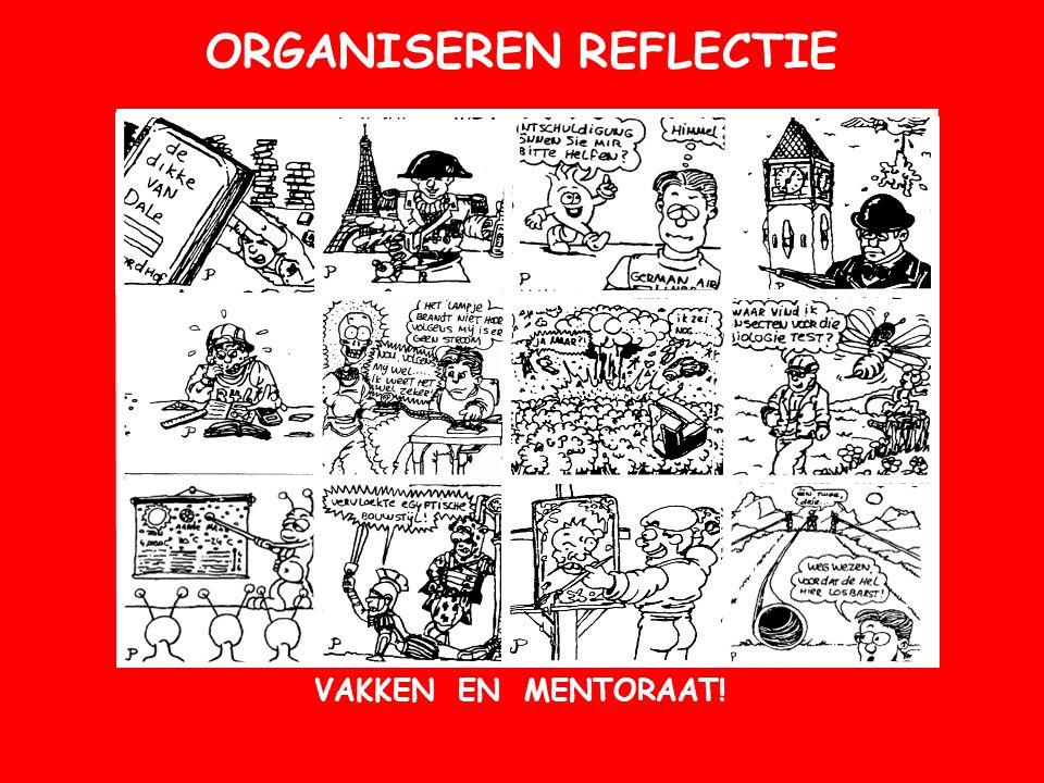 ORGANISEREN REFLECTIE VAKKEN OF MENTORAAT.