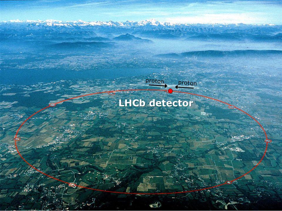 LHCb detector proton