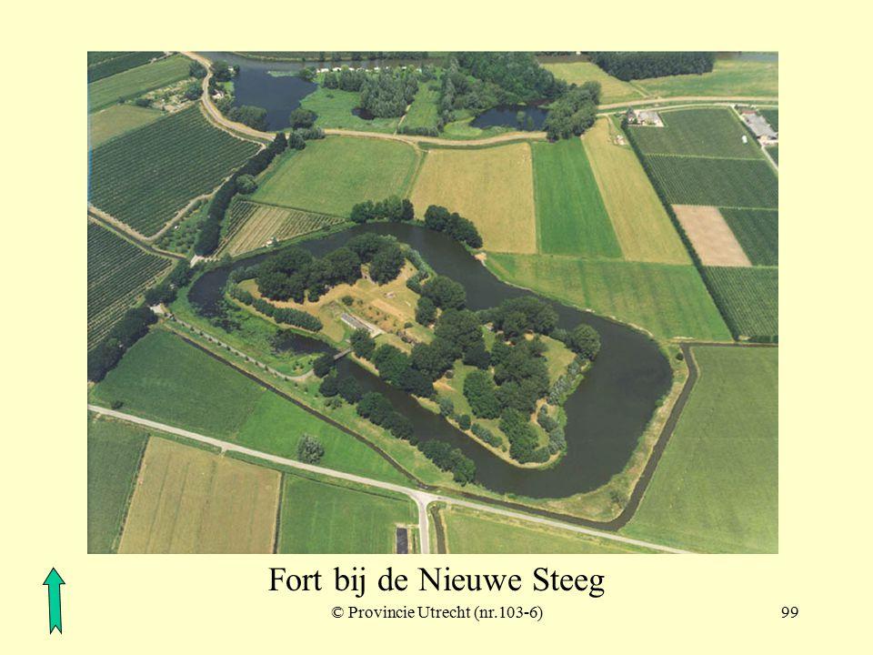 © Provincie Utrecht (104-6)98 Kedichem (ten noordoosten van het Lingebos)
