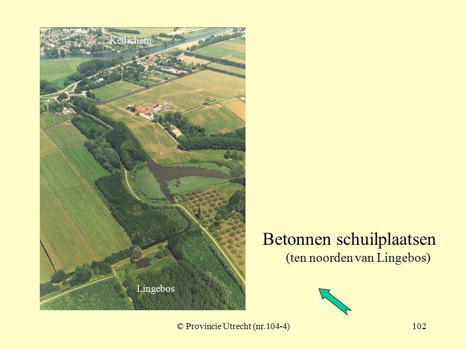 © Provincie Utrecht (nr.104-3)101 Lingedijk met sluis (bij aansluiting Nieuwe Zuider Lingedijk) Nieuwe Zuider Lingedijk