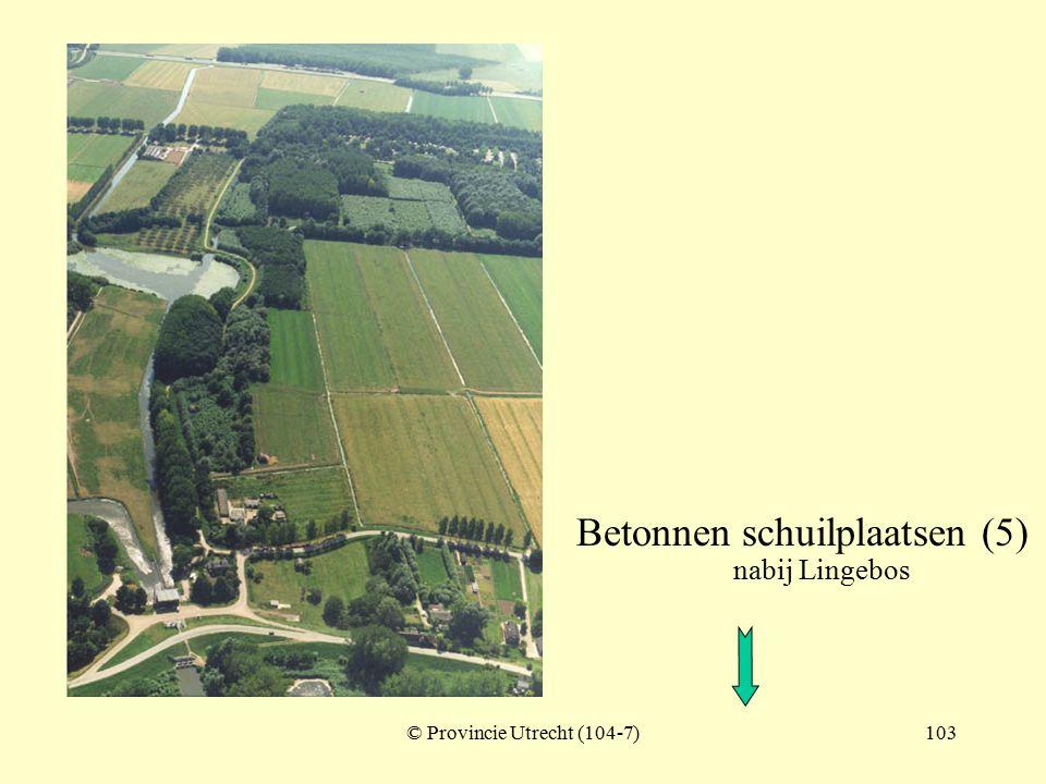 © Provincie Utrecht (nr.104-4)102 Betonnen schuilplaatsen (ten noorden van Lingebos) Lingebos Kedichem