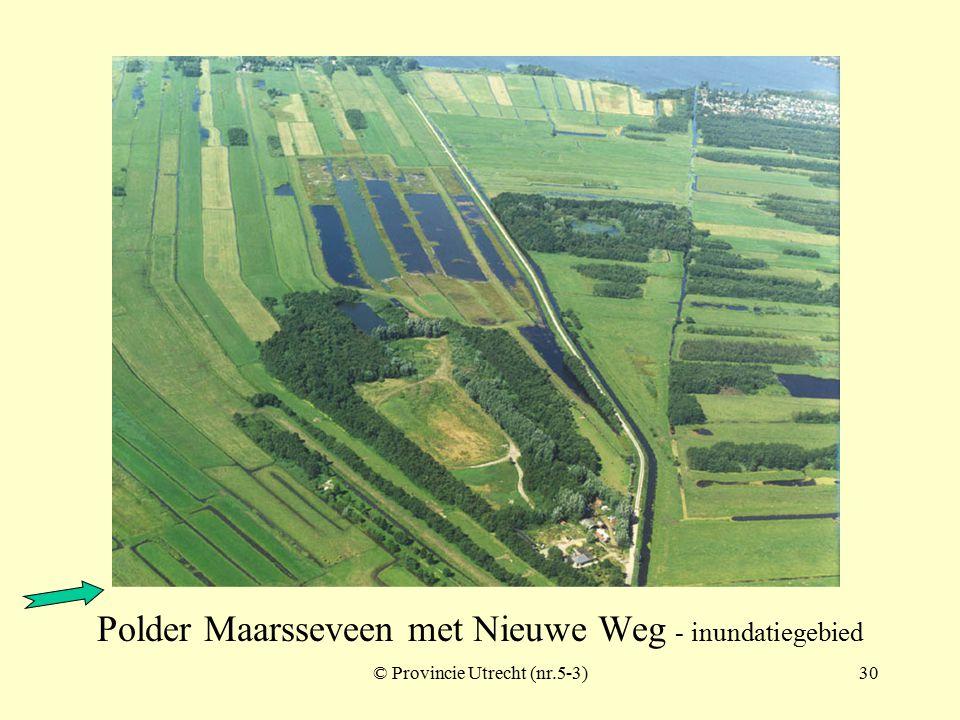 © Provincie Utrecht (nr.5-9)29 Polder Bethune (Loosdrecht) - inundatiegebied Breukeleveen