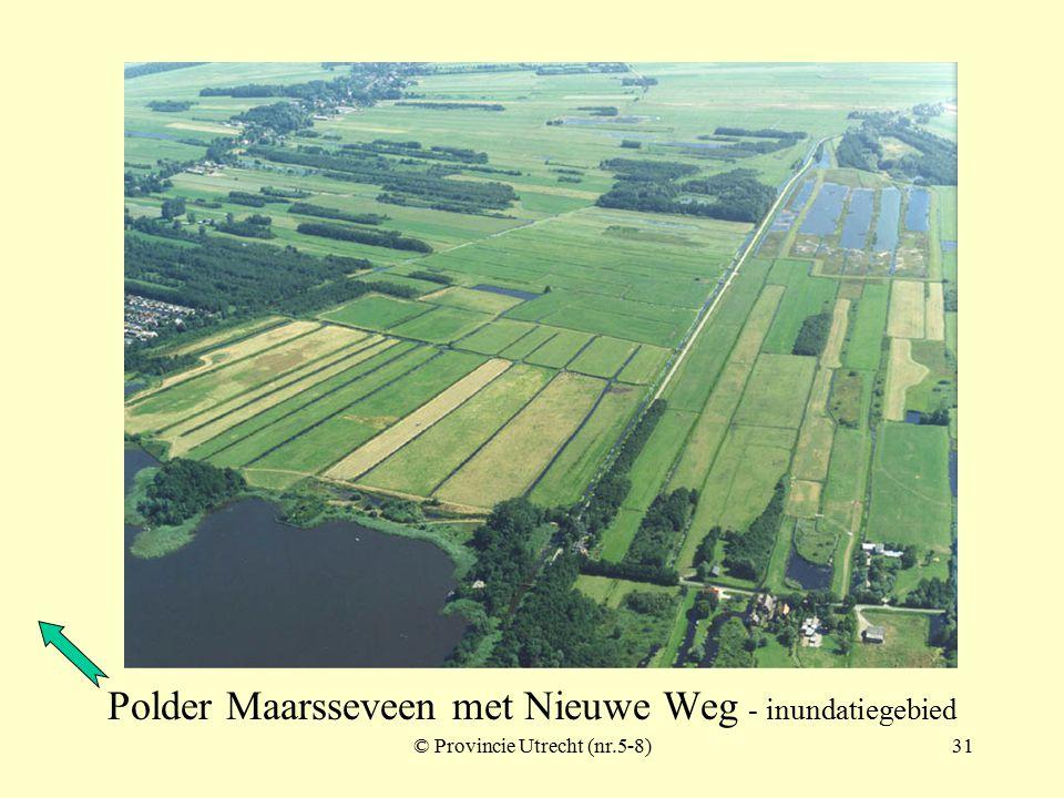 © Provincie Utrecht (nr.5-3)30 Polder Maarsseveen met Nieuwe Weg - inundatiegebied