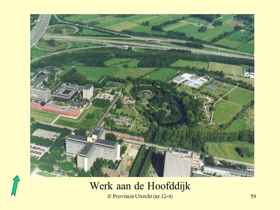 © Provincie Utrecht (nr.12-7)58 Werk aan de Hoofddijk