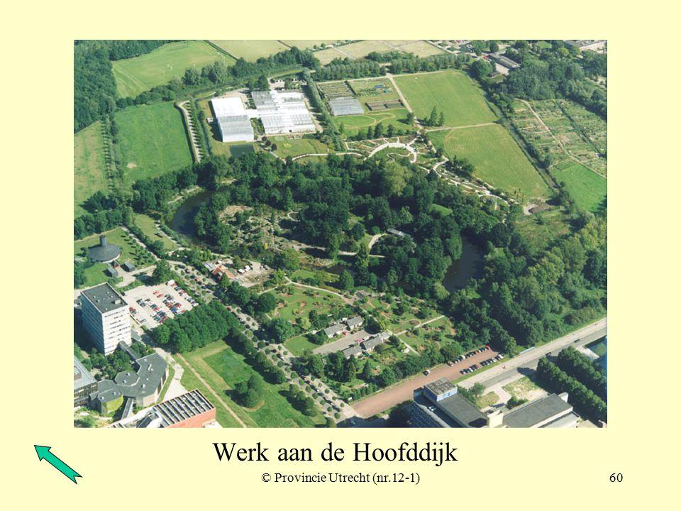 © Provincie Utrecht (nr.12-4)59 Werk aan de Hoofddijk